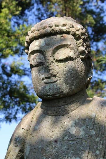 http://blogimg.goo.ne.jp/user_image/13/44/6bfd9cda5c257b8800fdcca142df4918.jpg