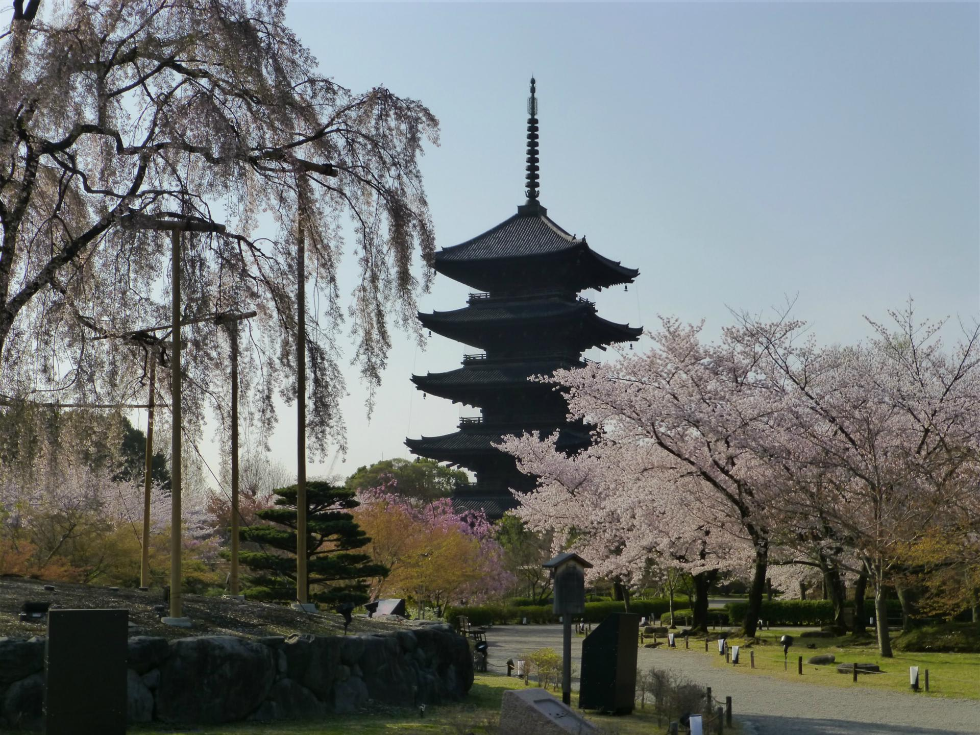 古都京都の文化財の画像 p1_34