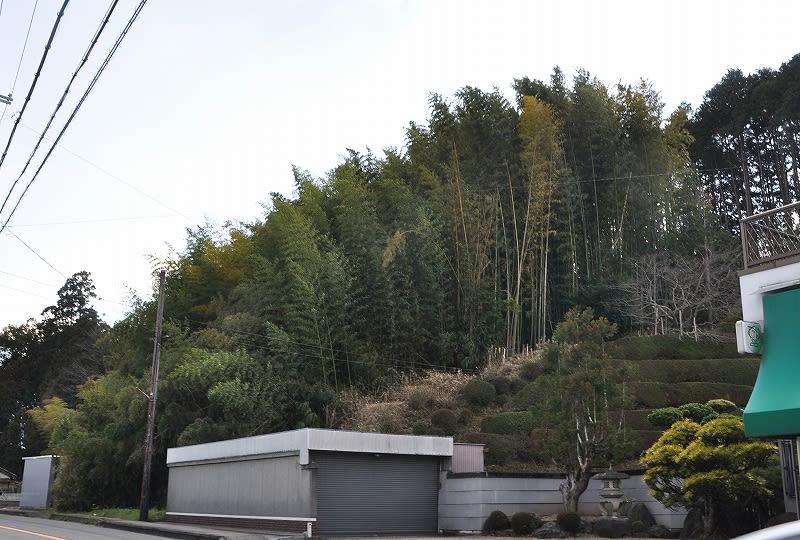 坂ノ山丘陵