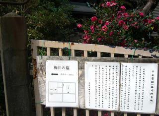大坂新町遊廓の遊女・梅川の終焉地(十王堂跡)