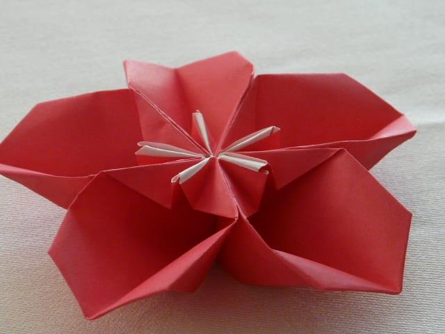 折り 折り紙 折り紙 梅 : blog.goo.ne.jp