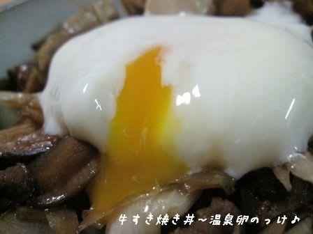 温泉卵の画像 p1_16