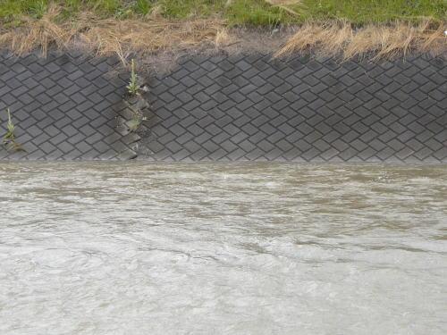 増水した田川