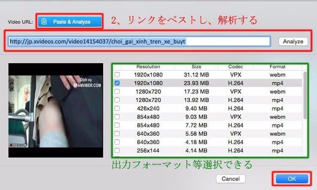 「Youtube-DLG」の使い方について - japan …