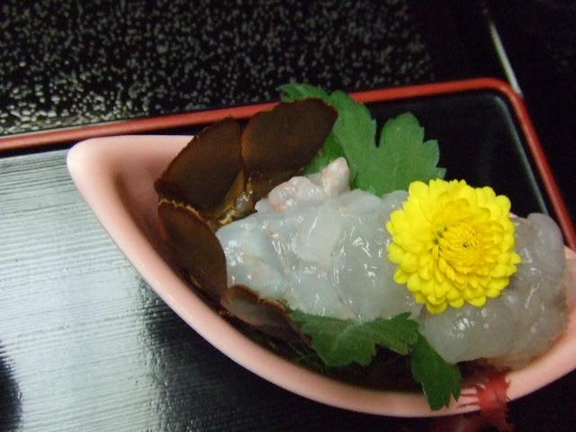 2008_0126shimoda0029