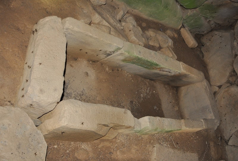谷脇古墳石棺