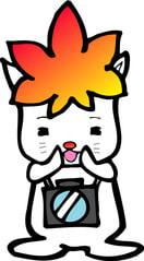 http://blogimg.goo.ne.jp/user_image/17/df/9e34c6170d99f6e0437c61d8144003a3.jpg?random=39431afe0c310a935f6bc8f13bc082d7