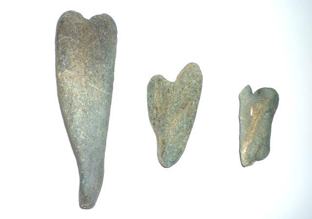 3月20日に採集した、比較的美形の「神足石」~ 左の最長品のサイズ 約18cm・3個とも緑色の角閃岩