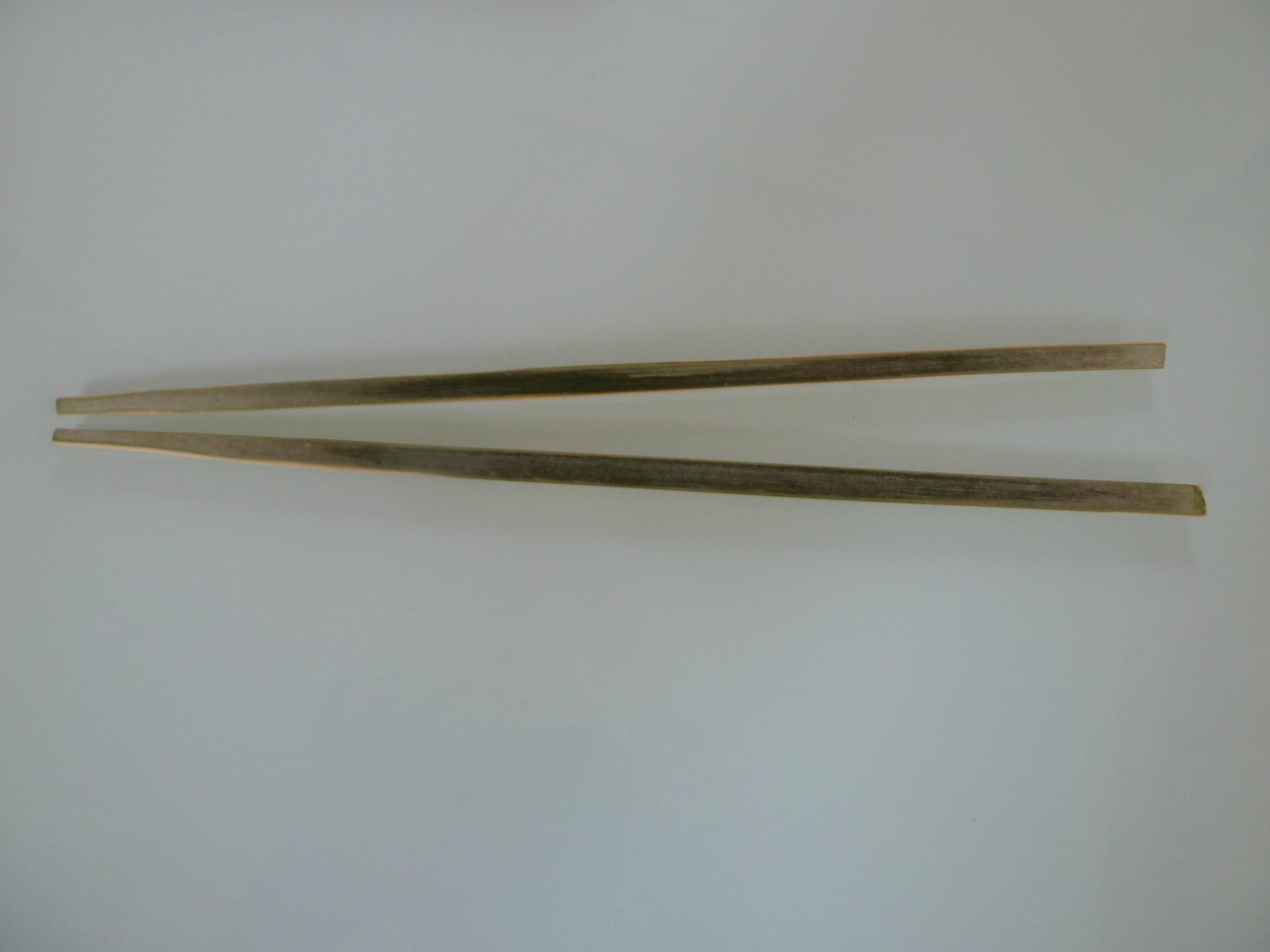 ゴールデン・レトリバーの画像 p1_40