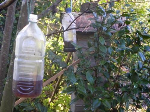 これが雀蜂バスターズだ、何の ...