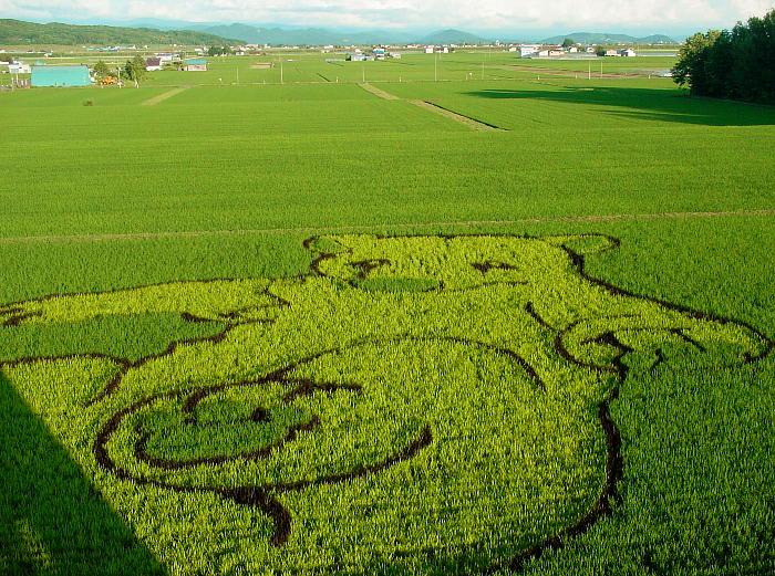 日本传统的稻田画