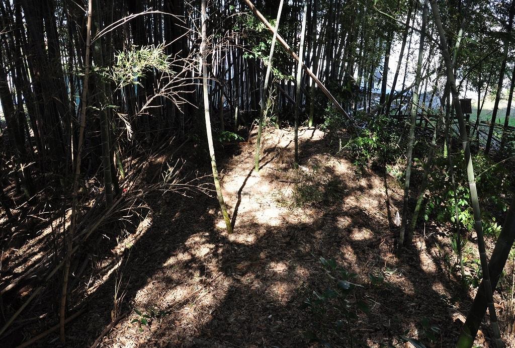 岡崎山円墳