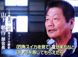 JA香川県善通寺・スイカ部合長