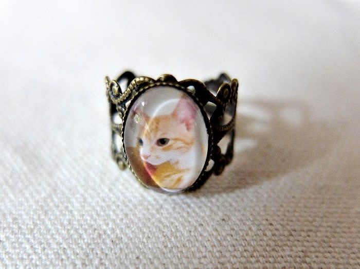 お客様の猫写真で作るリング