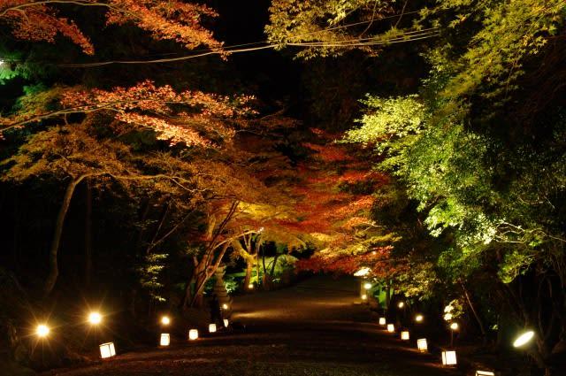 ここに行けば間違いなし!大阪の人気おすすめデー …