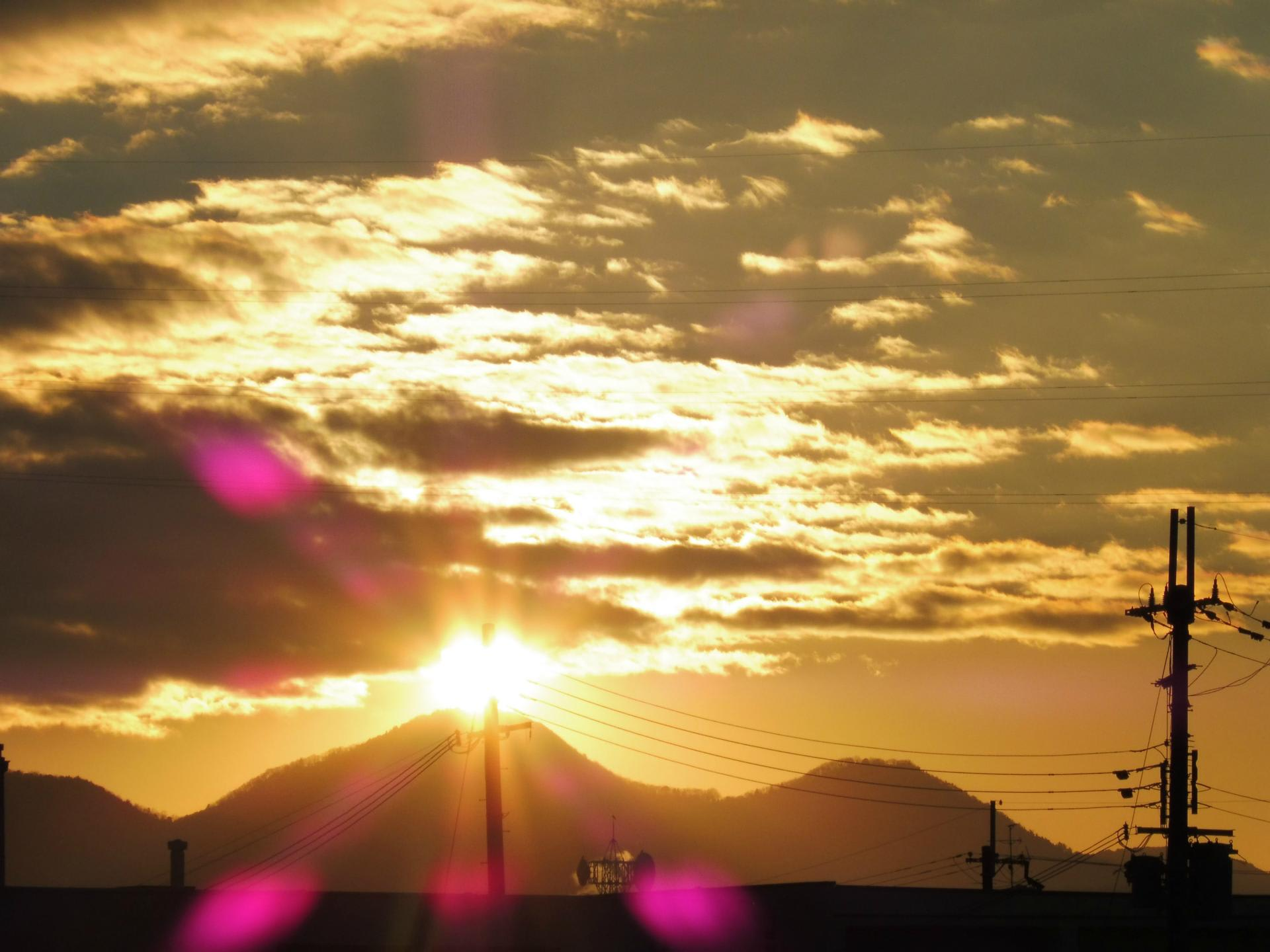 富田林百景+ 「とんだばやし」とその周辺の魅力を発信!