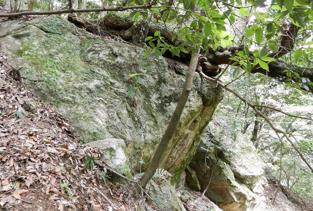 夕日観音の岩