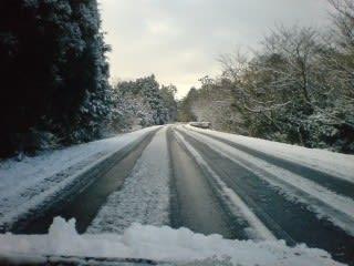 アスレチックの上(十字路)から先は積雪あり