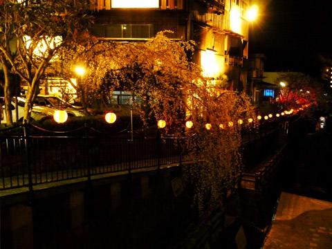 有馬川沿いの桜の小径のライトアップ
