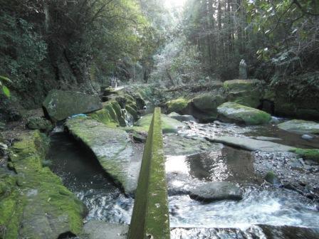関吉の疎水溝の画像 p1_17