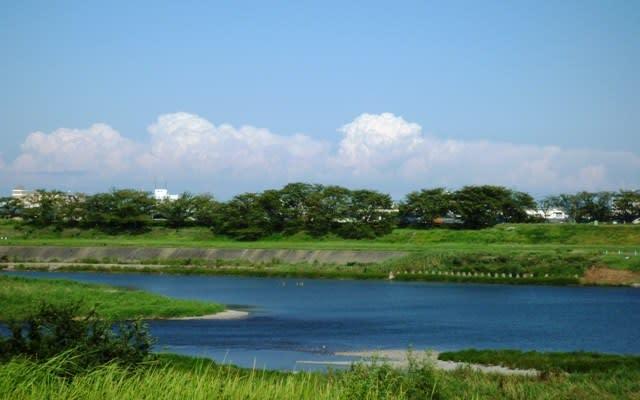 北方に列状をなして発達する、夏空の「入道雲」~ 宮川左岸の道路にて撮影
