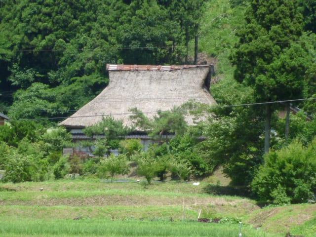 茅葺屋の塩澤さんいわく、トタン屋根は「缶詰」。 トタンをはがせばいつでも葺きかえられるし、 技術もそのなかに残っていると。