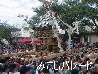 横須賀のイベント「みこしパレード」
