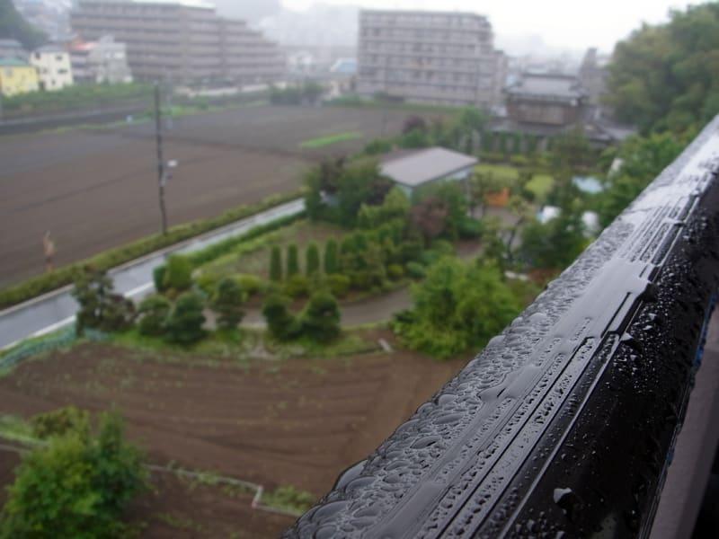 06月27日 雨降り