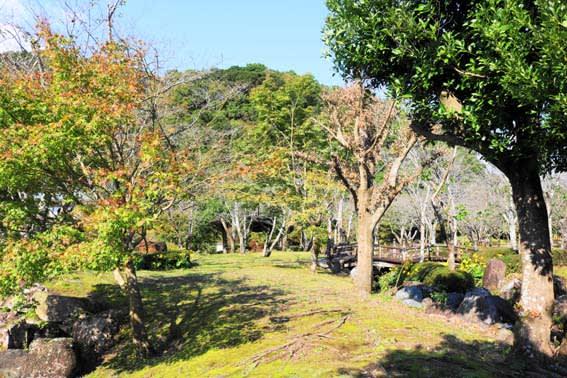 清水岩屋公園を散歩・・・気候は最高です^^