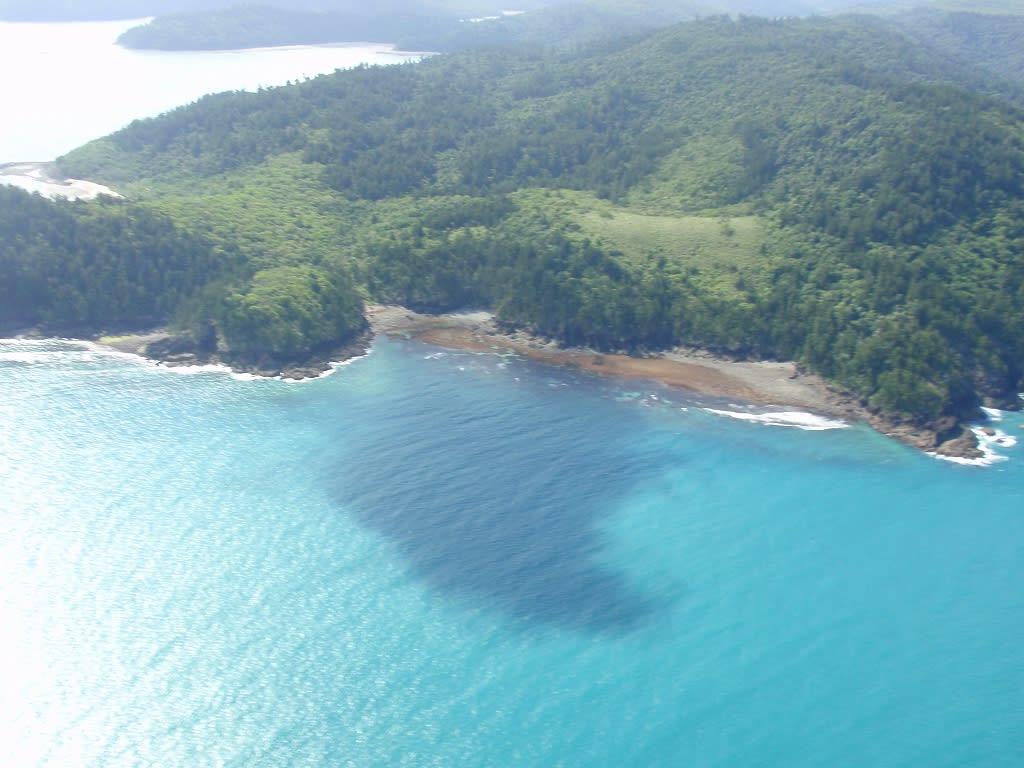 途中の島 どこの島かわかりませんが・・・・ 途中に見えた島です。 ヘリがハミルト... グレート