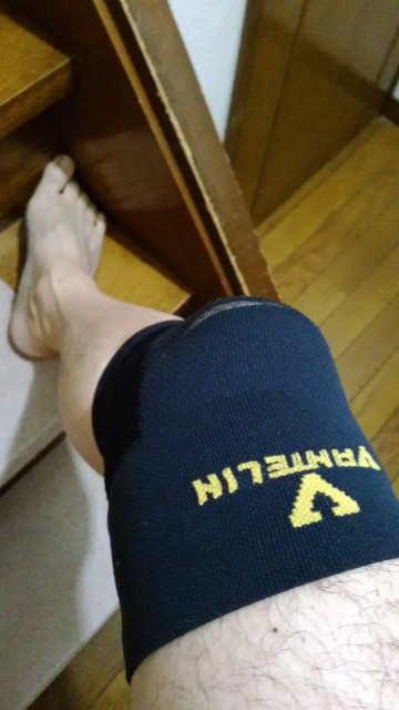 膝用サポーター