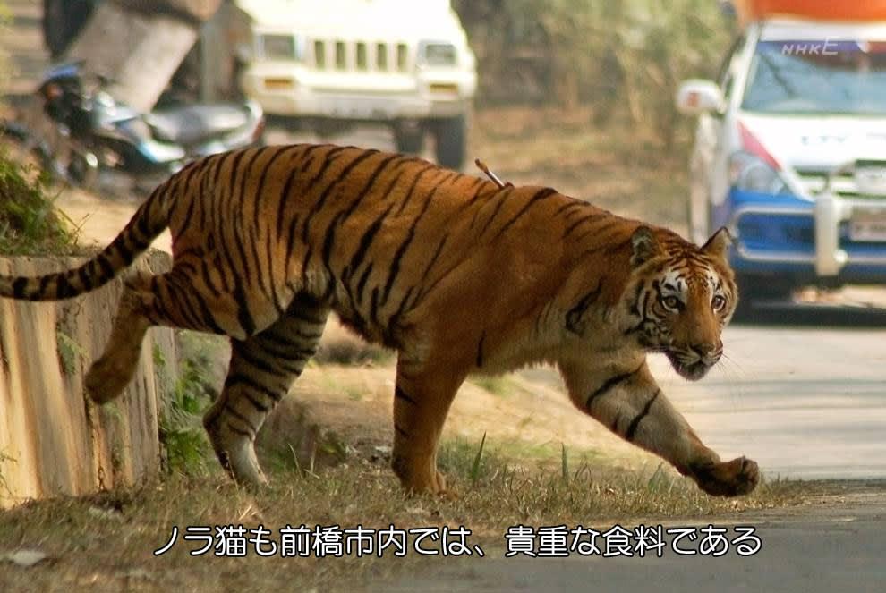 今日保存した最高の画像を転載するスレ 314 [無断転載禁止]©bbspink.com->画像>462枚