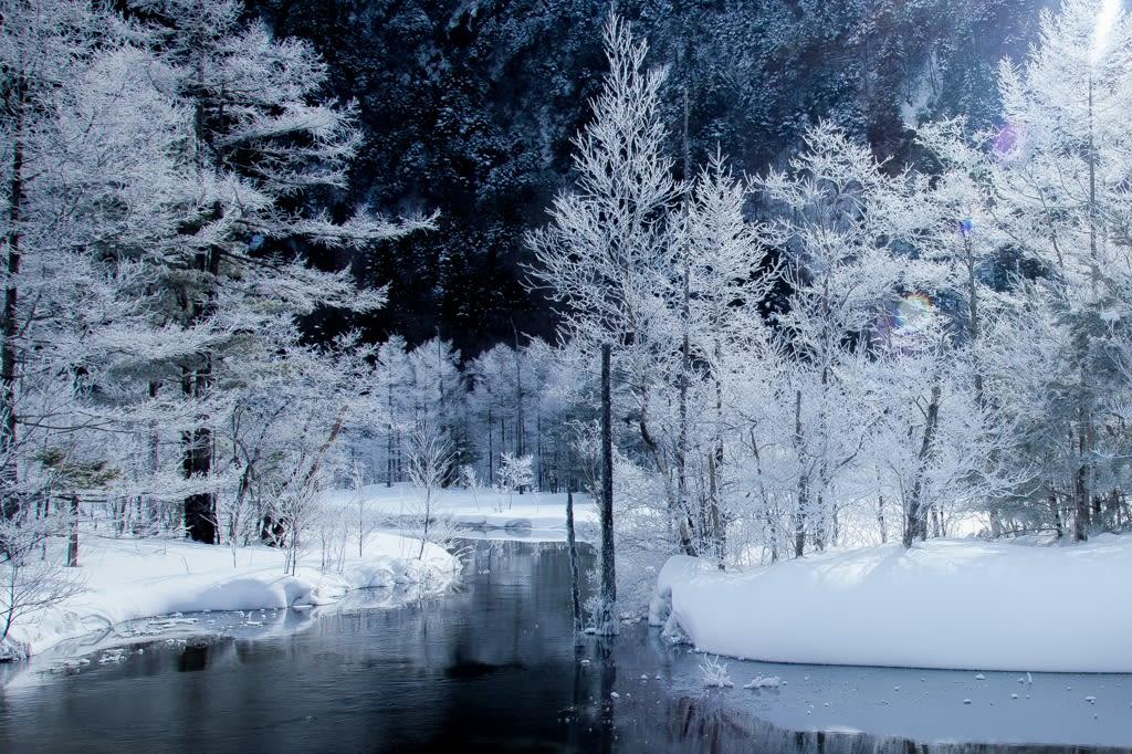 田代池の霧氷写真