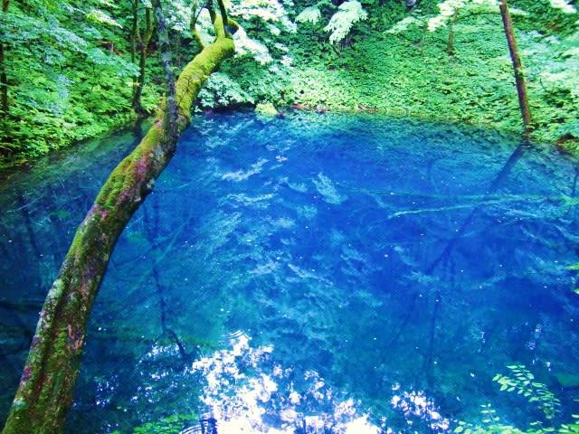 日本で4箇所しかない自然の ... : 日本の山地 : 日本