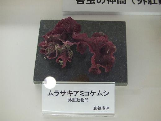 2010_03300063