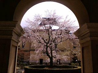 京都府庁に来ています。