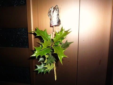 柊鰯の画像 p1_9