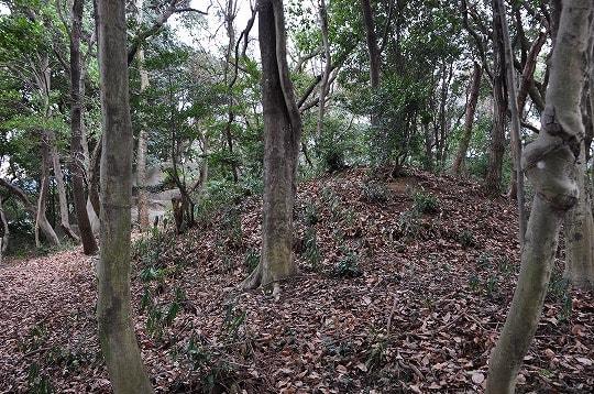 石光山古墳の墳丘