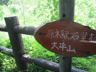 http://blogimg.goo.ne.jp/user_image/21/5f/fc32eea0268d59c112f7079bfcfced8d.jpg