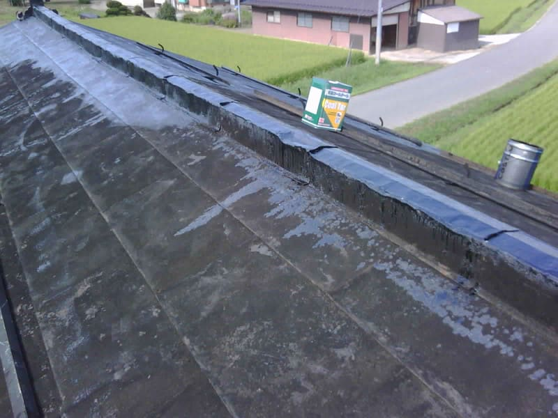 恒例行事 屋根塗り