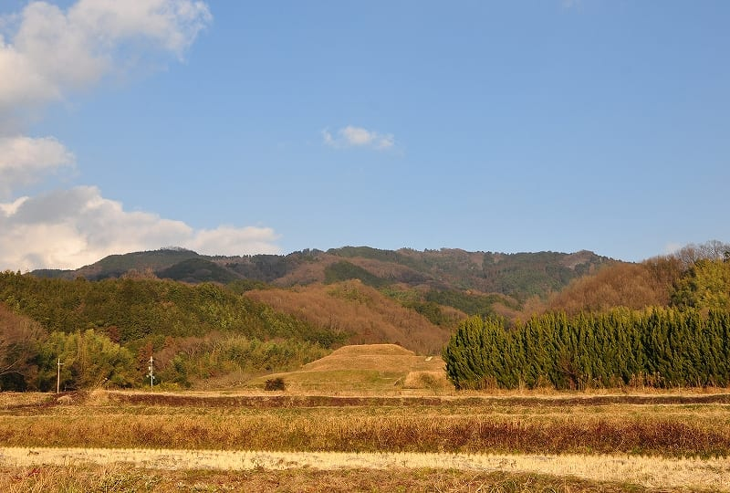 遠景・後方は龍王山