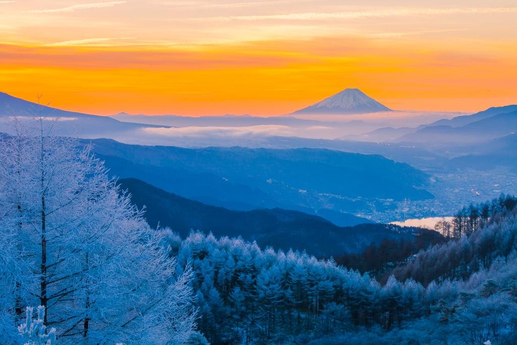 高ボッチからの霧氷と富士の写真