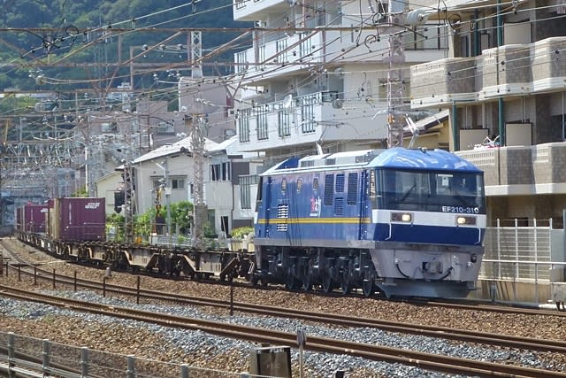 EF21-310