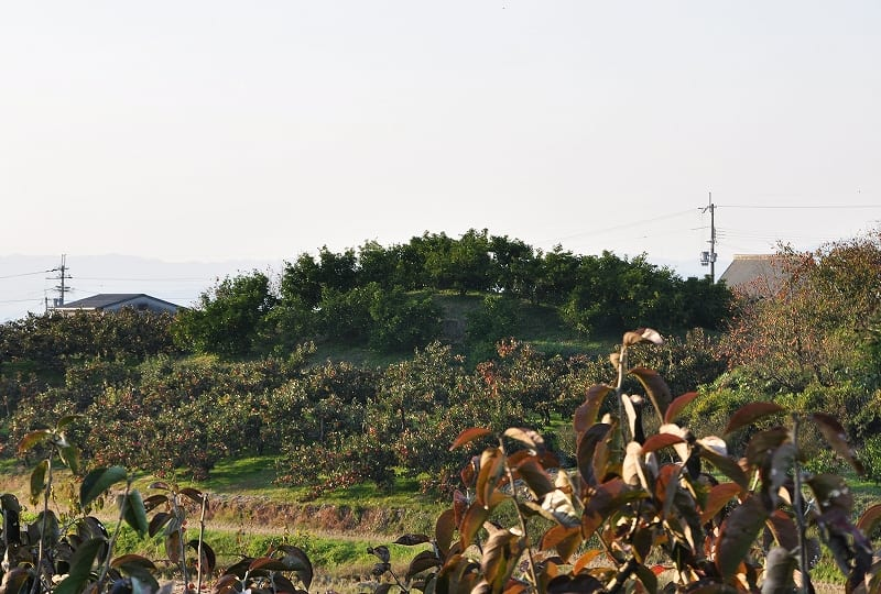 小岳寺塚古墳後円部