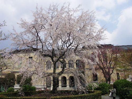 旧府庁背景