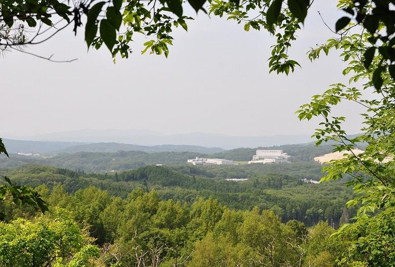 檀の山眺望