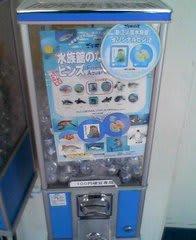 新江ノ島水族館オリジナルピンズ入り水族館のなかまたちピンズカプセル自販機