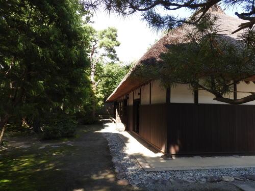 高橋節郎記念美術館
