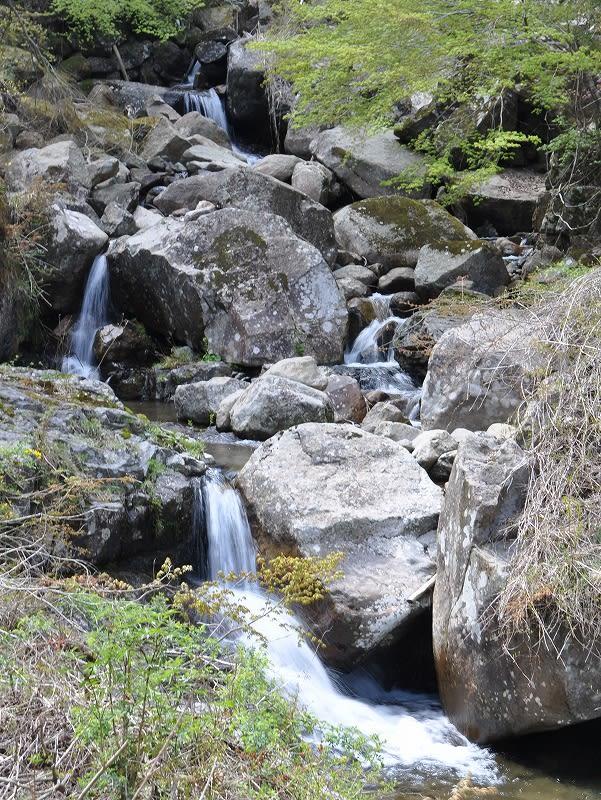 長走りの滝上流