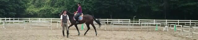 調教班 - 乗馬の世界-Riding Rec...